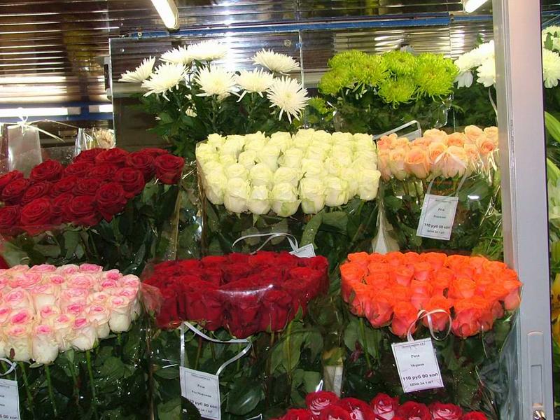 Роз оптовые в москве и московской области, москва скидки осенние